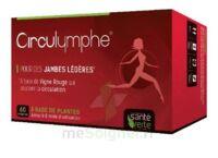 Santé Verte Circulymphe Triple Actions B/60 à VOIRON