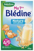 Blédine Ma 1ère blédine nature 250g à VOIRON