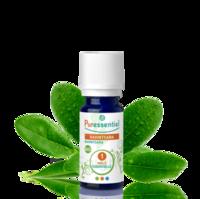 Puressentiel Huiles essentielles - HEBBD Ravintsara BIO* - 5 ml à VOIRON