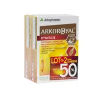 Arkoroyal Dynergie Ginseng Gelée royale Propolis Solution buvable 2B/20 Ampoules/10ml à VOIRON